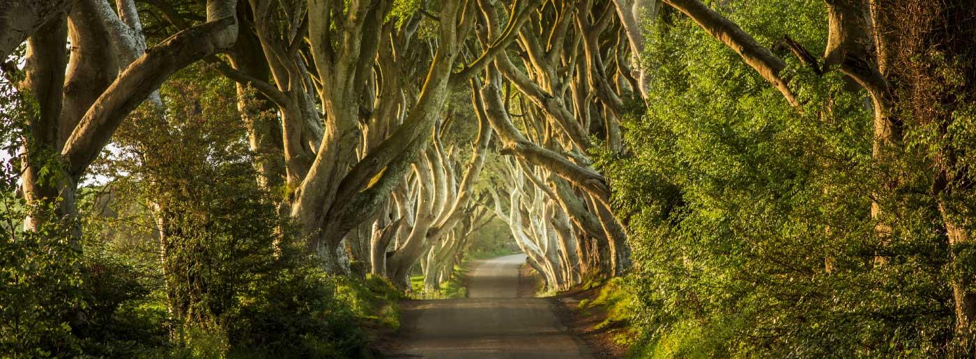 travel-ireland-tourism