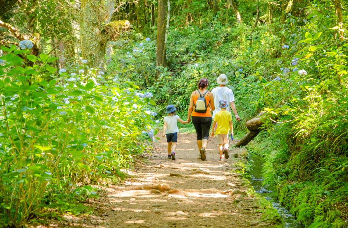 Parque Florestal das Queimadas Madeira