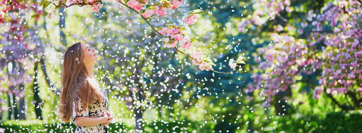 best-destinations-in-europe-to-enjoy-cherry-blossoms
