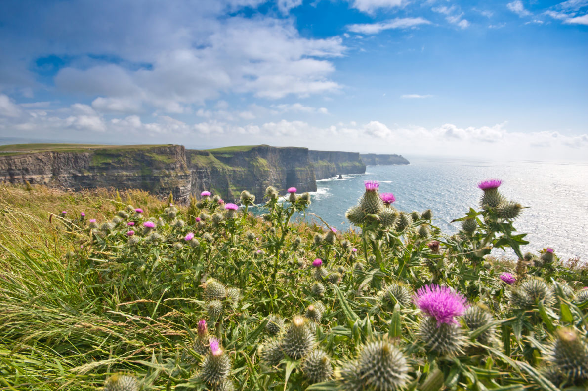 Best things to do in Ireland - Cliffs of Moher copyright silky - European Best Destinations