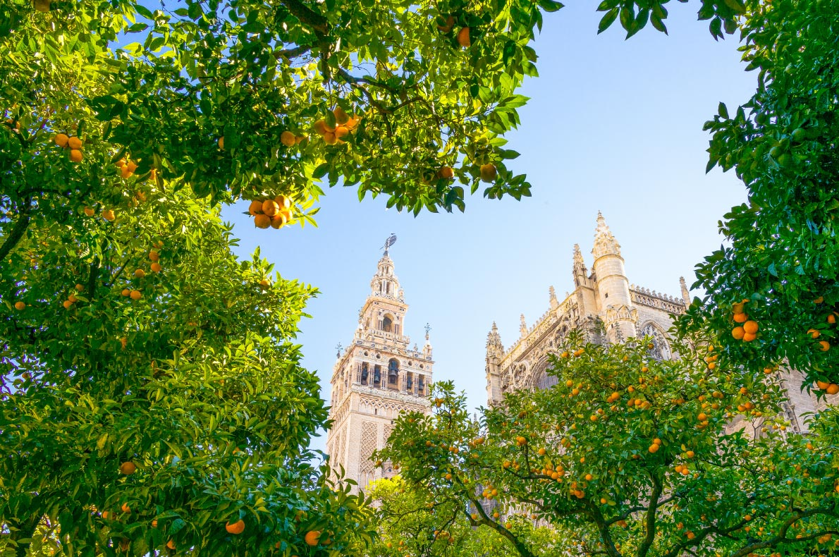 Best things to do in Spain - Seville copyright  Gimas - European Best Destinations