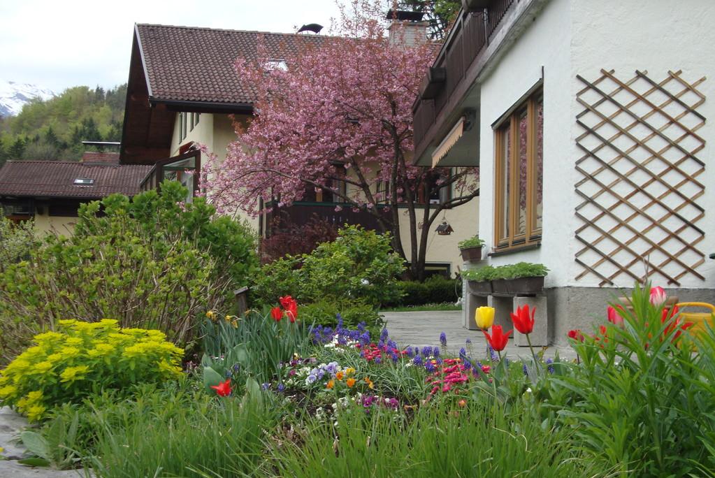 Blütenbracht rund ums Haus