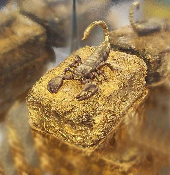 Торт для скорпиона. Шоколадный бисквит, персики, виноград, взбитые сливки
