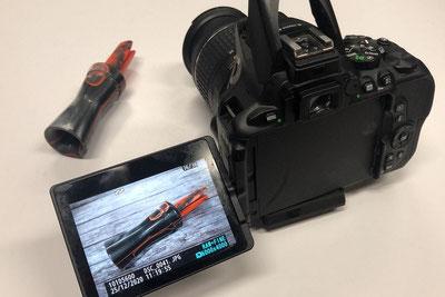 Bilder und Videos von der Krähenjagd Jagd Lockjagd