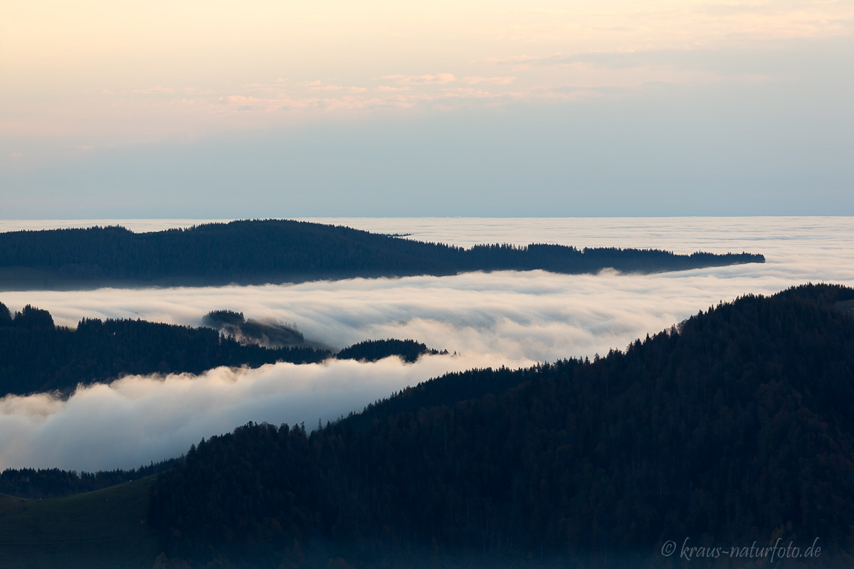 Morgens am Schauinsland