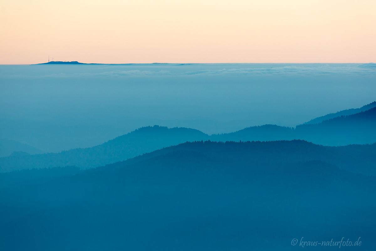 Morgens am Schauinsland, Hornisgrinde schaut aus dem Nebel