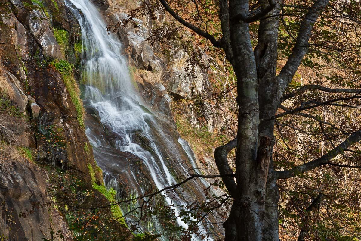Todtnauer Wasserfall