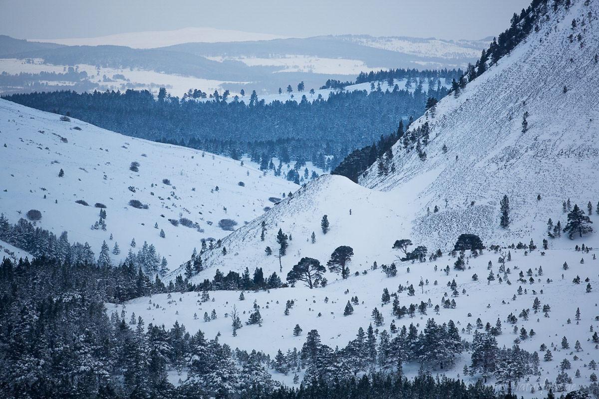 Landschaft in den Cairngorm Mountains