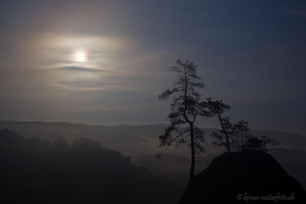 Mondschein auf der Bastei