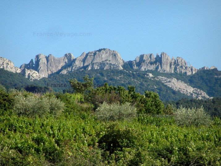 Les dentelles de Montmirail, Vaucluse, Provence, Mont Ventoux, Gîte, Ferienhaus, jas du Ventoux