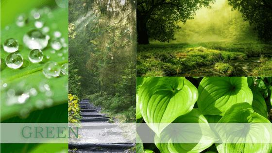 緑色は再生復活を意味し「冥府の王オシリス」の色。人間が安全に暮らせるスペース(空間)の色でもあります。