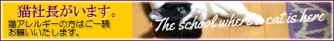 猫社長のいるサロン