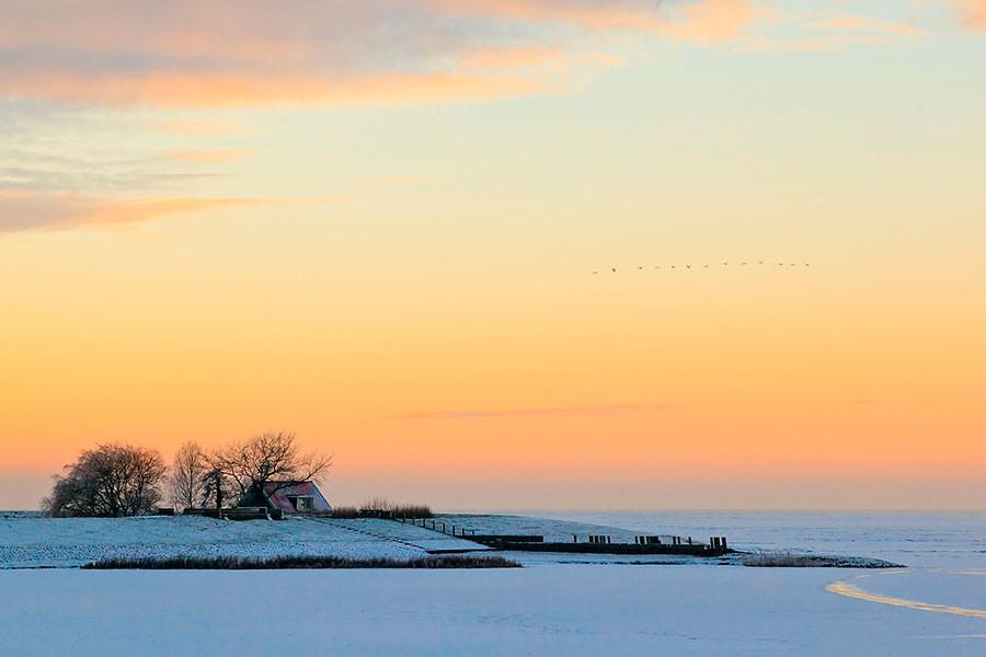 'Winter in Friesland' - Tweede prijs Franeker Courant - 2011