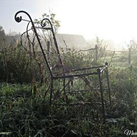 Déco de jardin © Maxim Marzi