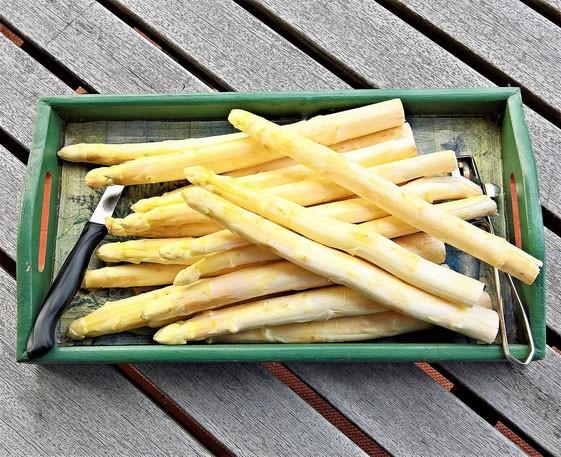 【德國飲食】高「IQ」和白蘆筍