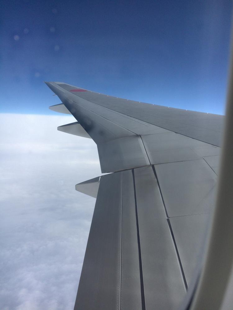 ANAの飛行機から上空を眺める