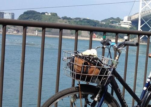 自転車 前かご