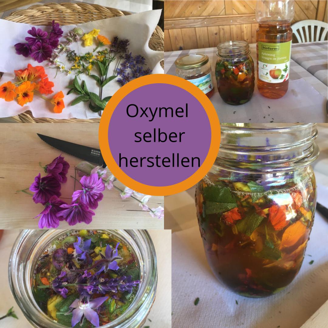 Oxymel - Was ist das und wie stelle ich es her?