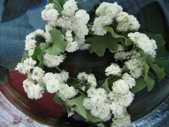 Blütenkränze werden