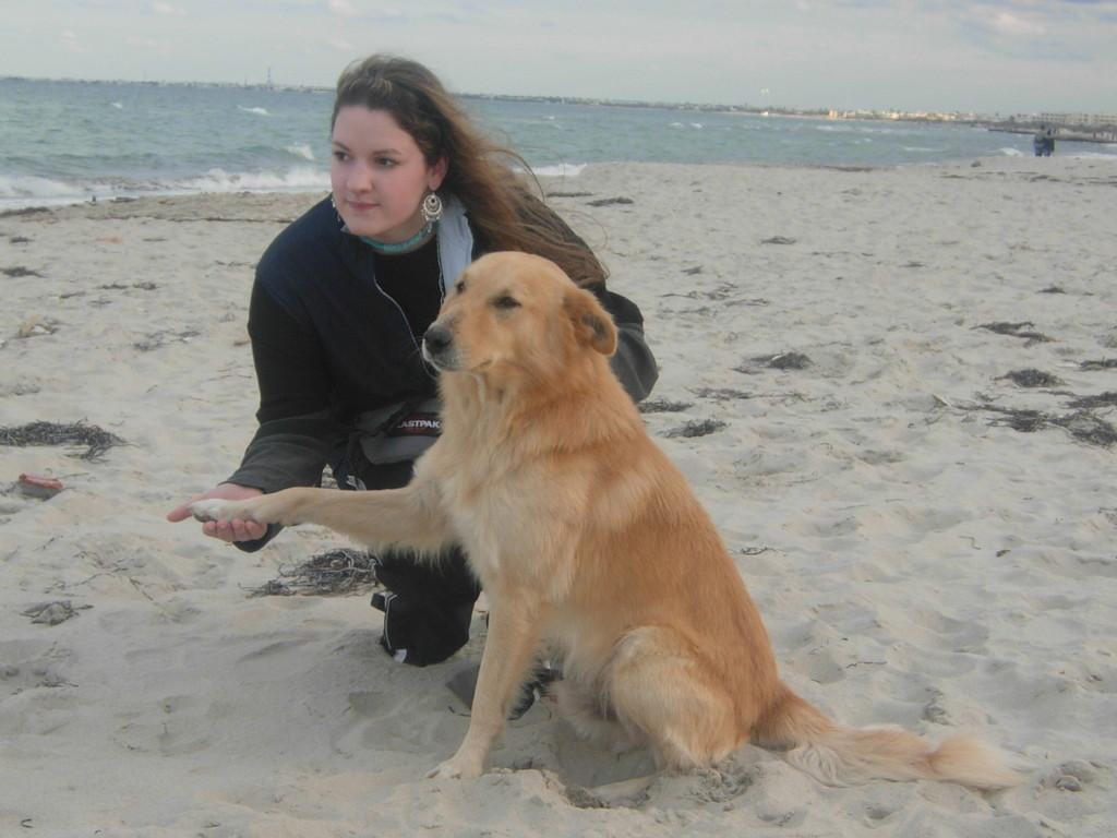 Strandhund Djerba