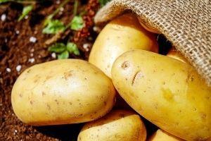 Gewichtsreduktion - Gesundheit - Kartoffeln