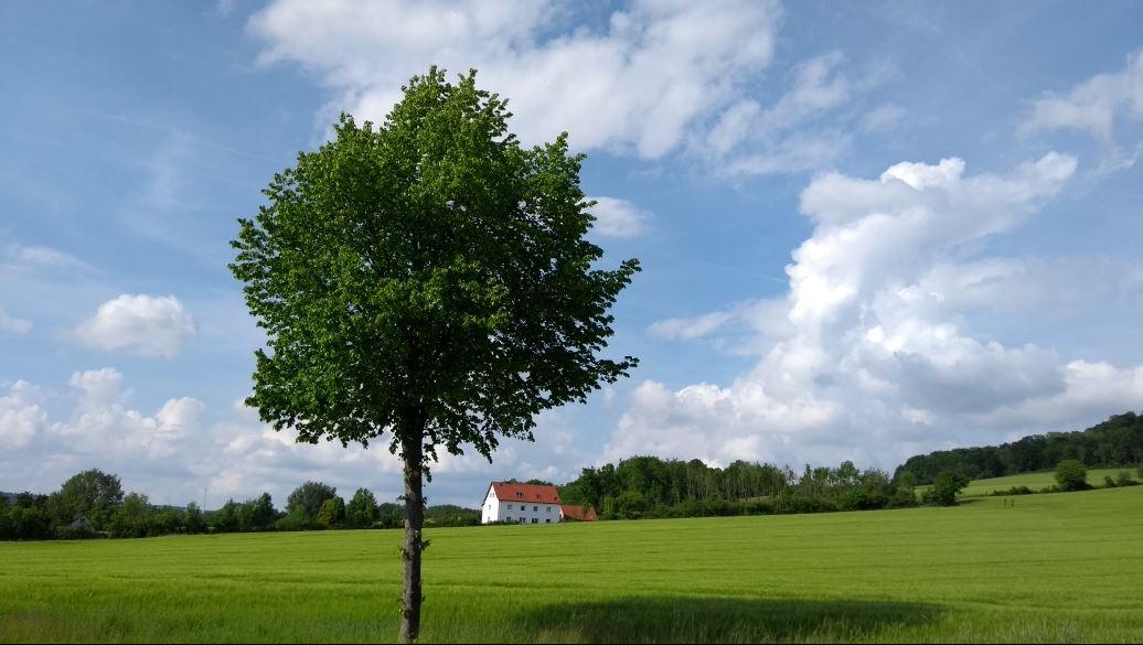 Fläming-Venlo