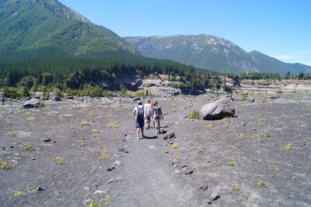 Parque Nacional Conguillió (Chile): Zum Eisbach
