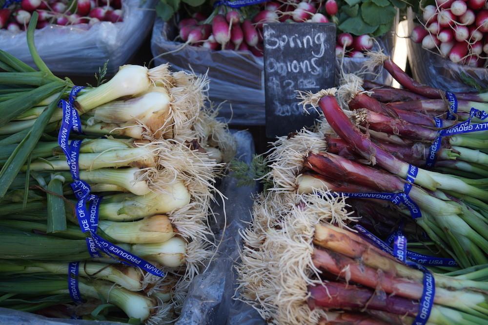Ferry Plaza Farmer's Market: Frühlingszwiebeln