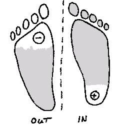 """Eine häufige ungünstiger Druckverteilung auf den """"Sitzfüßen"""" besteht darin, dass die Reiterin einen konstanten Druck auf der """"Ferse"""" des inneren """"Sitzfußes"""" aufbaut und den Kontakt mit dem """"Ballen"""" und """"großen Zeh"""" des äußeren Sitzfußes verliert."""