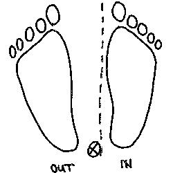 Vermeide das Steißbein (wie im Bild) auf der Außenseite der Wirbelsäule des Pferdes zu platzieren, denn sonst kommt auch der innere Sitzfuß näher an die Wirbelsäule und Du wirst schnell nach außen gesetzt.