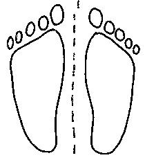 """Die """"Sitzfüße"""" müssennicht notwendigerweise in allen Situationen den gleichen abstand von der Wirbelsäule haben, aber das ist ein guter Anfang. In jedem Fall sollte der innere """"Sitzfuß"""" nicht näher an der Wirbelsäule sein, als der äußere."""