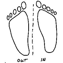"""Wenn die """"Zehen"""" beider """"Sitzfüße"""" aus der Biegung herauszeigen, wird das Pferd überbiegen und/oder stark auf eine Schulter fallen."""