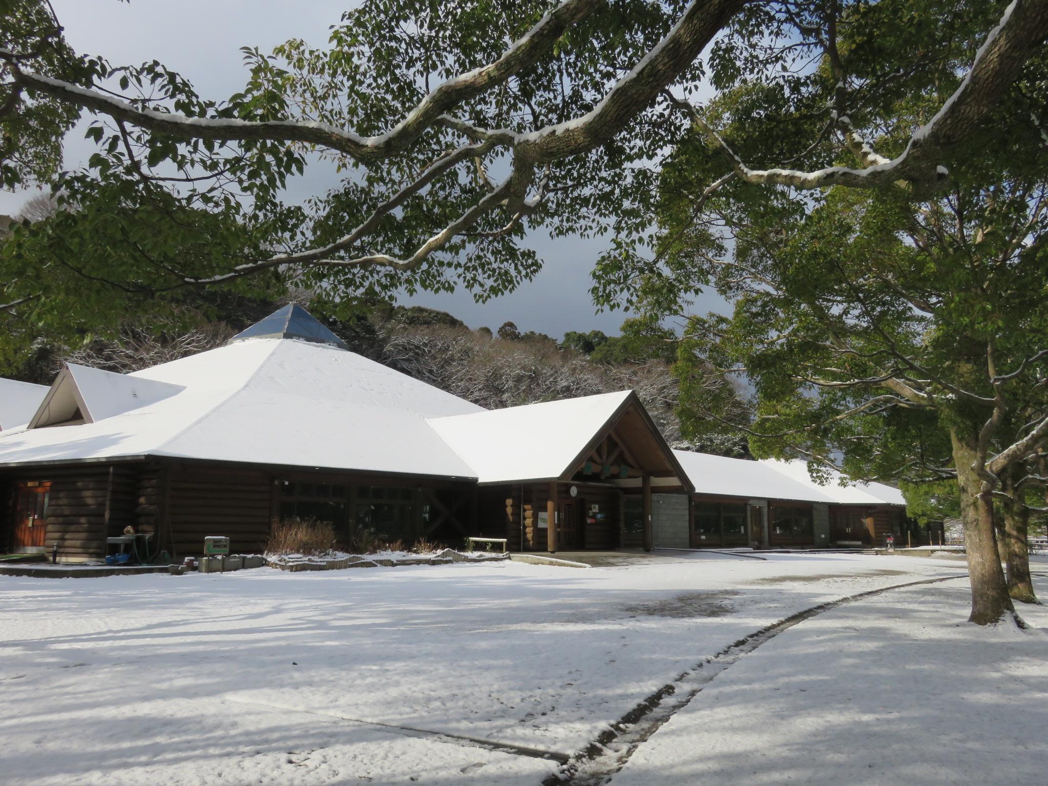森の家冬化粧