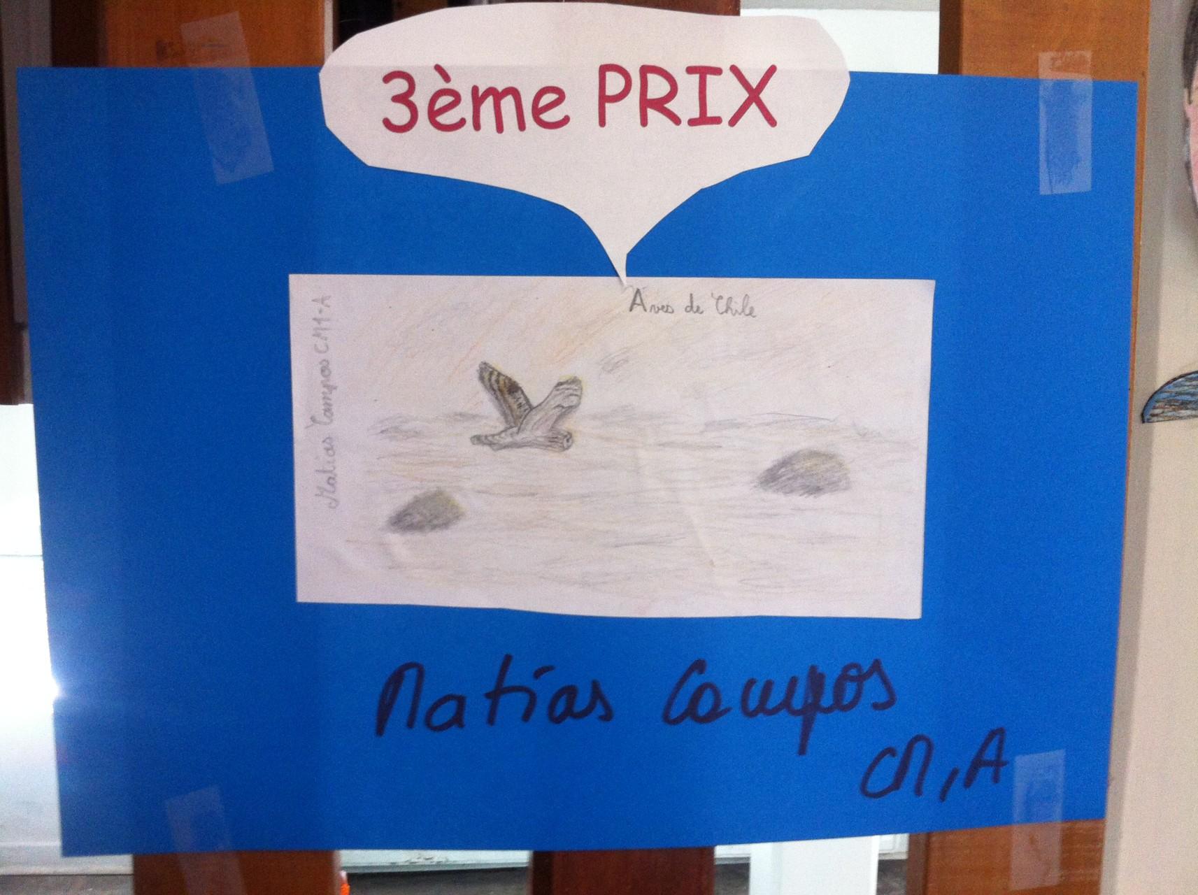 3ème prix : Aves de Chile