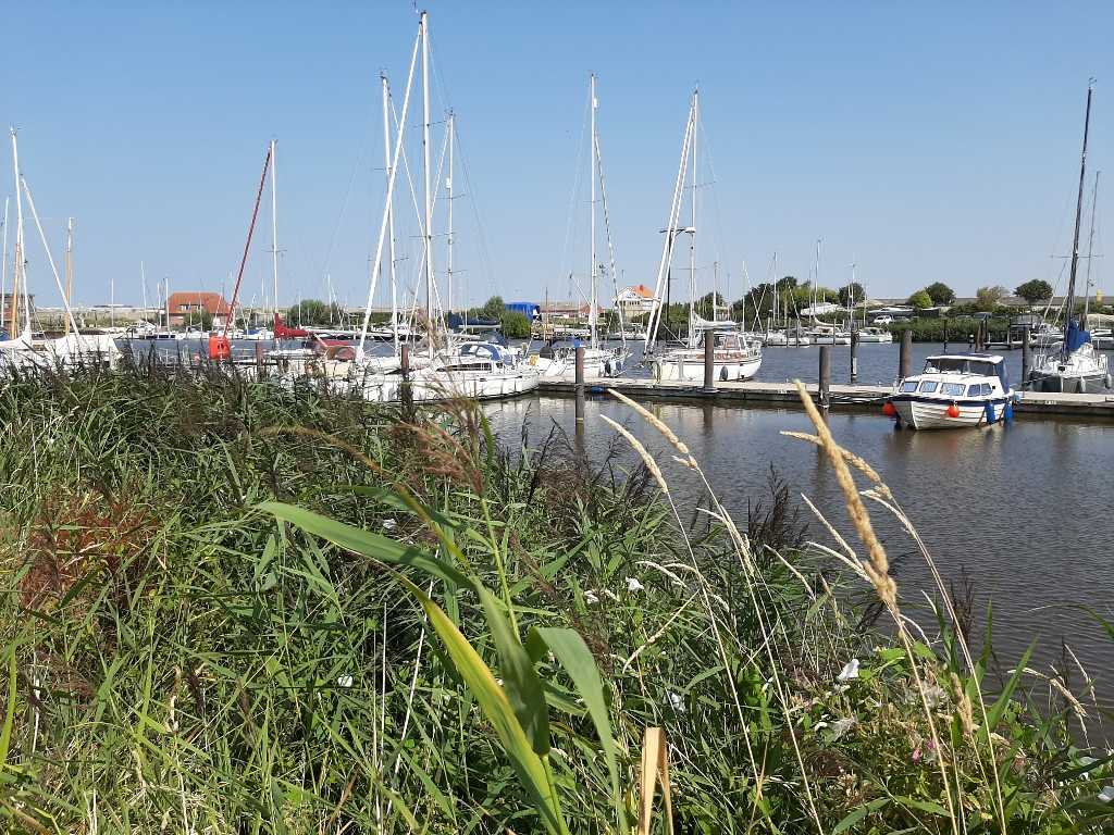 Harlesiel Jachthafen