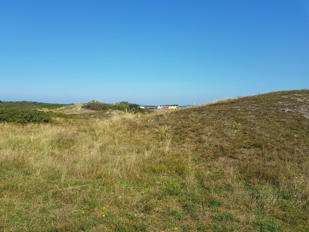 Langeoog Dünen