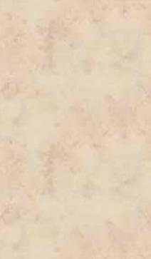 E013069-00 Kalkstein