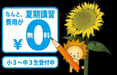 『夏期講習』の申込を受付中!