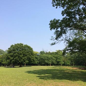 所沢記念公園