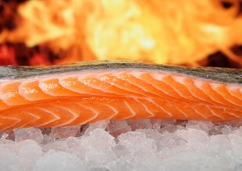 (妊婦が食べて良い魚・悪い魚や貝は?)
