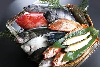 (妊婦が食べて良い魚・ダメな魚)