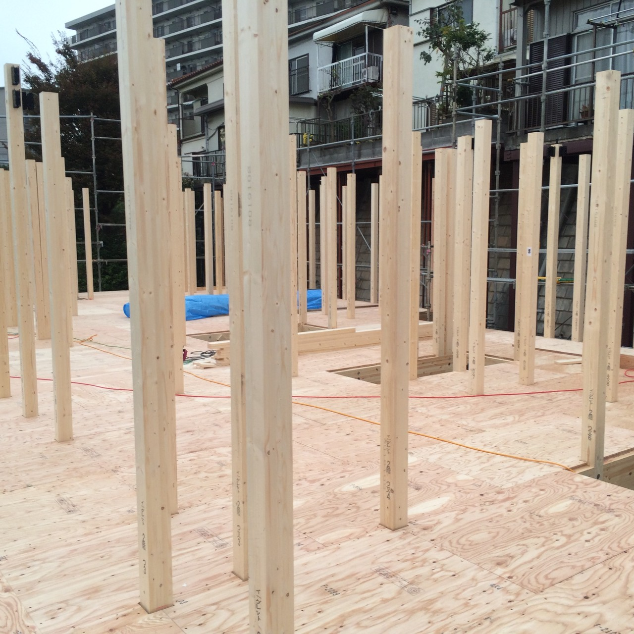 上棟日。プレカットされた木材が確実に組まれていきます。