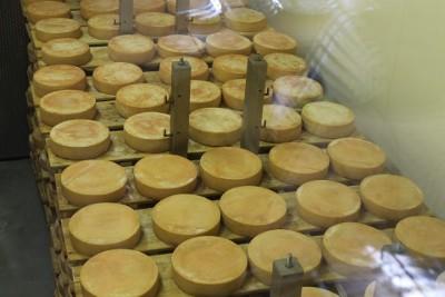 Ein Blick in eines von drei Käselagern