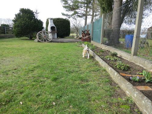 im Garten von Frauchens Mama