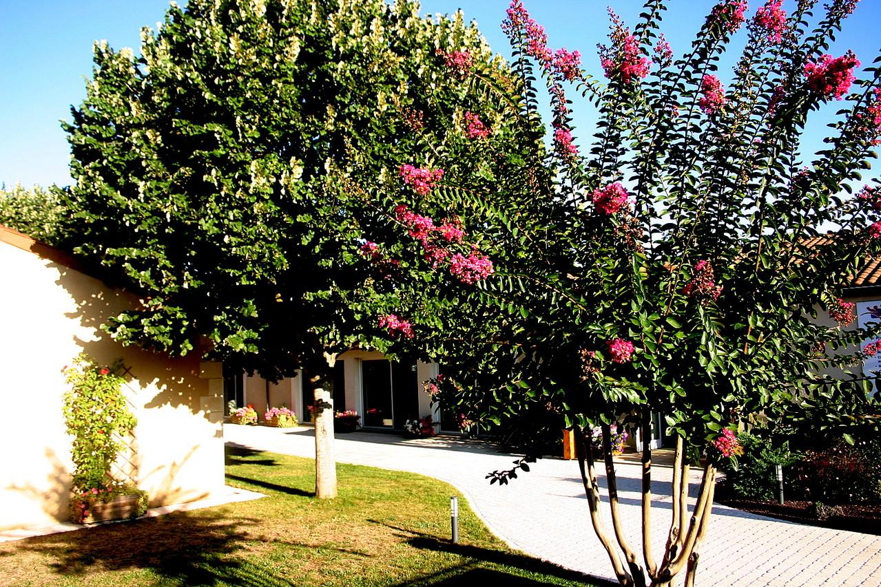 Centre Wellness à Bergerac, un espace naturel pour votre bien-être