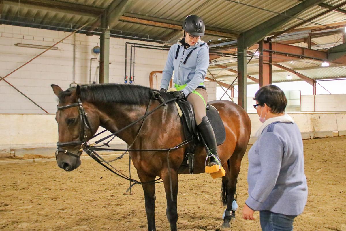Ins Pferd hineinfühlen