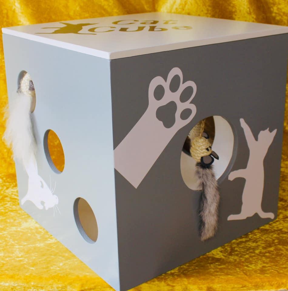 CatCube mit 2 Fellmäuschen