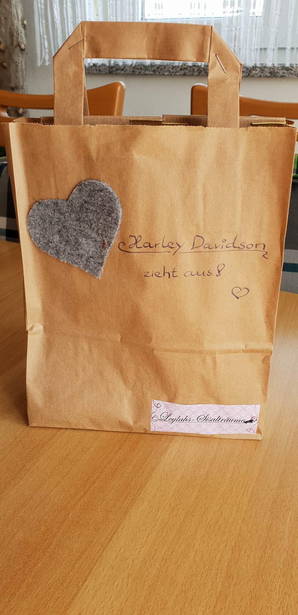 Mit diesem Kitten-Paket von Leylahs-Sisalträume zog der Süße ein.
