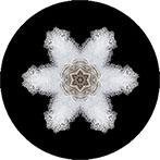 Mandala mit einer Eisplatte vom Weidenbach,Eisplattenmandala