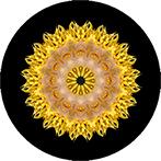 Mandala mit einer gelben Dahlie im Schnee, Schneedahlienmandala